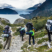 Steady 50-miles-per-hour winds blast hikers near Grey Glacier in Torres del Paine National Park, Chile. The foot of South America is known as Patagonia, a name derived from coastal giants, Patagão or Patagoni, who were reported by Magellan's 1520s voyage circumnavigating the world and were actually Tehuelche native people who averaged 25 cm (or 10 inches) taller than the Spaniards.