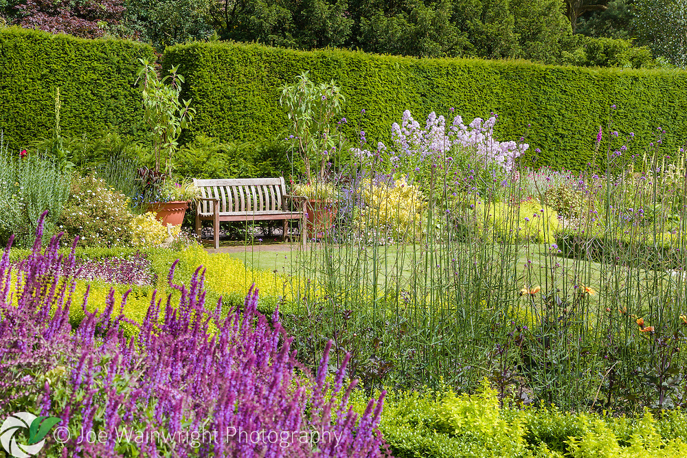 Herbaceous perennials and shrubs flowerin the July sunshine - in the Pool Garden at Abbeywood Gardens, Cheshire