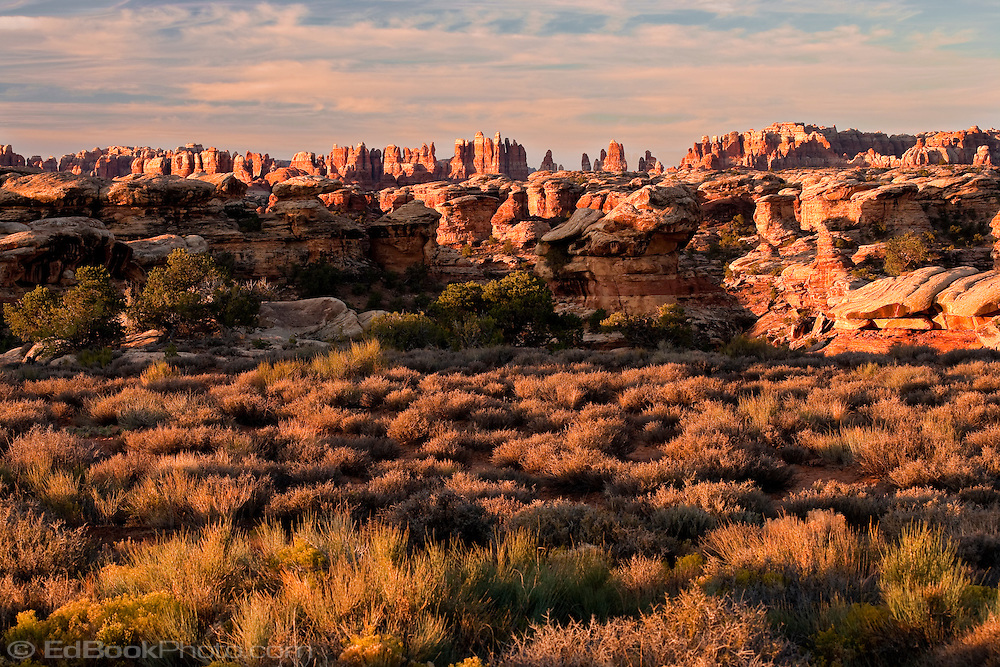 The first light of morning warms The Needles district of Canyonlands National Park, Utah, USA.