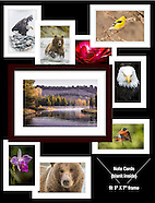 Note Cards - 5 X 7