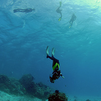Snorkeling and free-diving on the .Great Barrier Reef, Australia, Pacific Ocean