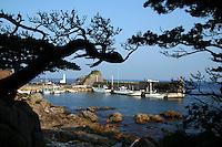 Shikinejima Port, Shikinejima Port, Izu Islands