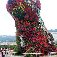 """""""Puppy"""" by Jeff Koons"""