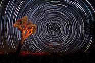 Star trails - Joshua Tree National Park