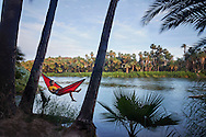 A man relaxes while swinging in a hammock suspended between two trees in the date palm oasis of San Ignacio, Baja California Sur, Mexico.