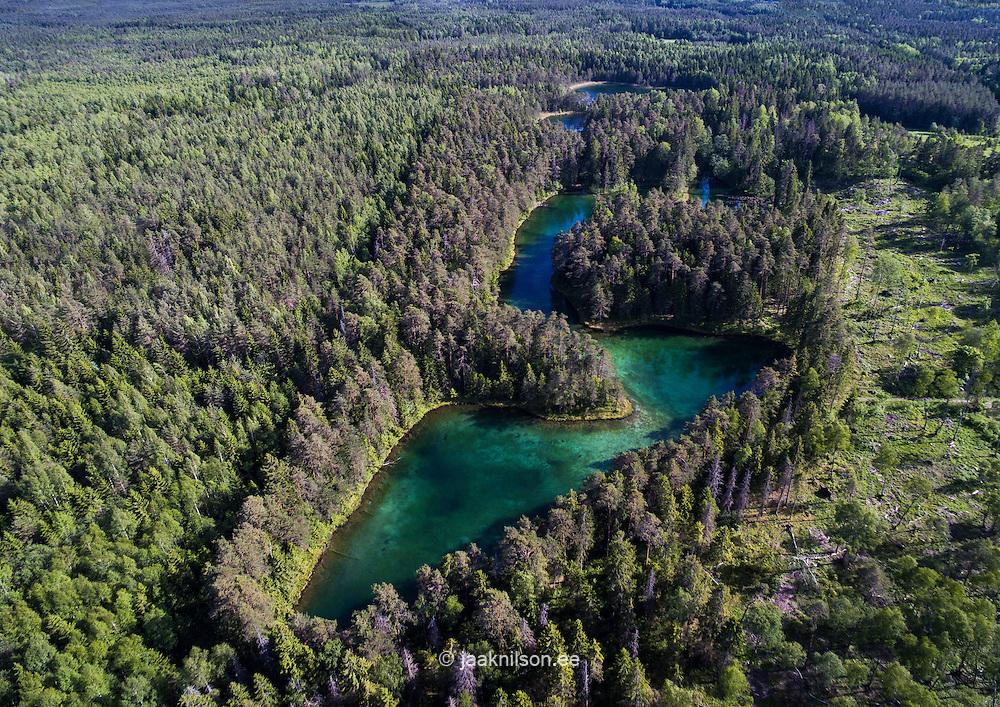 Äntu Great Lake in Estonia. Aerial, green forest. Conifer.