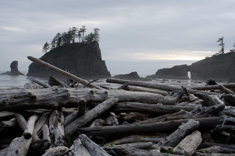 At Second Beach Thursday, June 19, 2008 in La Push, Washington.