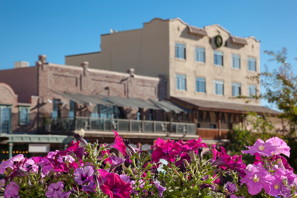 """Flowers in Downtown Truckee 2"" - These flowers and old buildings were photographed along commercial row in historic Downtown Truckee, California."
