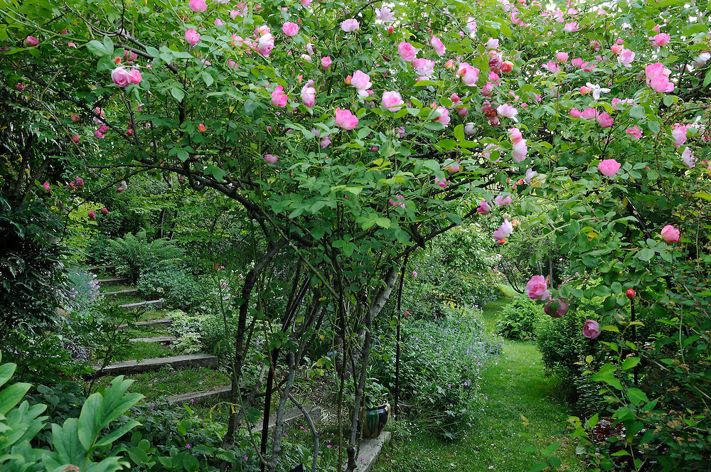 France, Languedoc Roussillon, Gard, Concoules, Jardin, garden, Tomple, jardin remarquable, roses