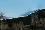 Full moon, Red Rock Lakes National Wildlife Refuge, Centennial Mountains, Beaverhead National Forest, Montana, aspen trees, (Populus tremuloides)