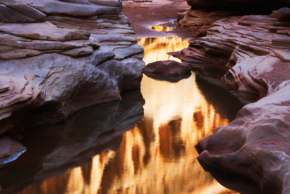 A pool of water reflects the canyon walls of White Canyon. Near Hite, Utah.