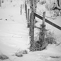 Rural Fence in Norway. Image taken with a Leica X2 camera (ISO 100, 24 mm, f/8, 1/80 sec).