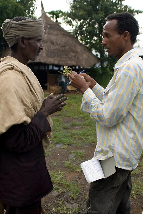 Gebregiorgis Abebe, expert au Bureau Gouvernemental d'Agriculture de la région Amhara, discute avec un fermier à la coopérative de Quhar, point de vente des semences et engrais et lieu de préparation des récoltes destinées au marché national. Éthiopie août 2011.