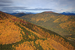 USA, Alaska, Bettles.  Fall colors turn the Alaskan hills and mountains gold.  Credit as: © Josh Anon / Jaynes Gallery / DanitaDelimont.com