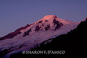 The Last Light of Day Falls on Mt. Baker's Peak, Heliotrope Ridge in Evening Shadow.