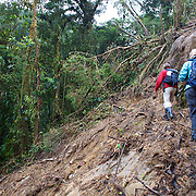 Hikers walk through the Cloud Forest near Boquete, Panama on a Ngobe Indian trail, still used by the indigenous Panamanians to get from the province of Bocas del Toro to Boquete.