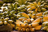 bananas sold at the Saturday (Satok St.) market, Kuching