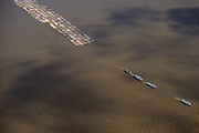 Brazil, Amazon region, Para State. Deforestation: raft of logs on lower Amazon river.