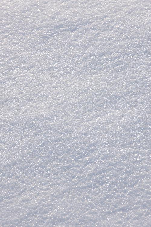 Close-up of side-lit fresh snow