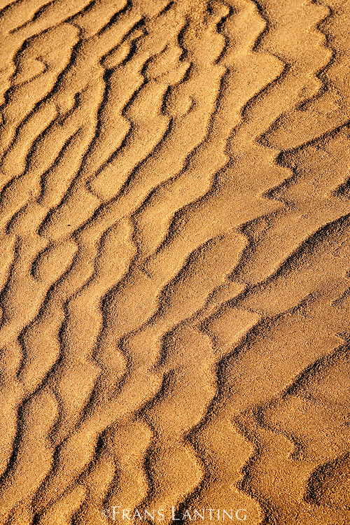Sand dune patterns, Namib-Naukluft National Park, Namibia