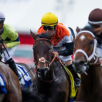 Wishing Gate with Gary Stevens up wins the GII San Clemente Stakes at Del Mar Race Course in Del Mar, CA on July 21, 2013. (Alex Evers/ Eclipse Sportswire)