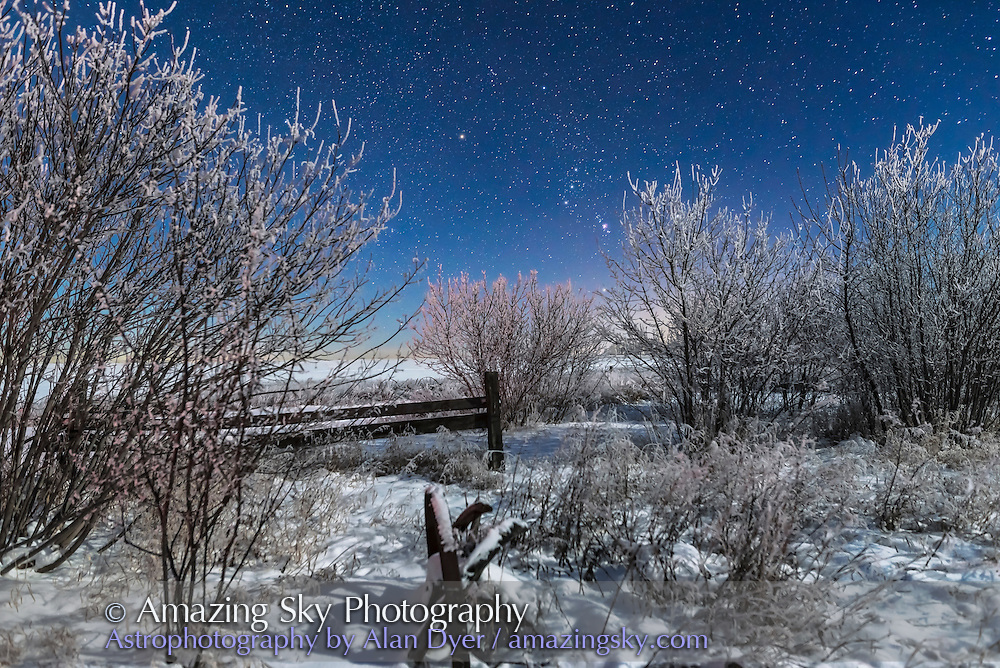 Orion rising in the moonlight over an old fence and farm implement at my house in southern Alberta, on a very cold and frosty -20&deg; C night on January 3, 2017. Illumination is from the waxing crescent Moon.<br /> <br /> This is a stack of 4 images for the ground to smooth noise, and one image for the sky, all 15 seconds at f/2.8 and ISO 1250 with the Nikon D750 and 24mm Sigma lens.