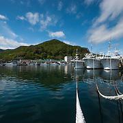 Wideangle of Rausu port in Shiretoko, Hokkaido taken from a low perspective.
