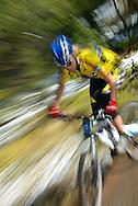Female mountain biker in yellow jersey. Motion blur. Idaho. Model released.