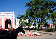 Horse and park in Cardenas, Matanzas, Cuba.
