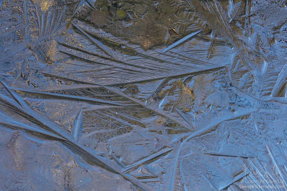 A think layer of ice on a pond in Lynnwood, Washington, captures colorful reflections from different directions.