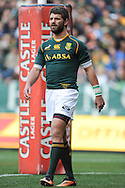 CAPE TOWN, SOUTH AFRICA - Saturday 28 September 2013, Willie le Roux of South Africa during the Castle Lager Rugby Championship test match between South Africa (Sprinkboks) and Australia (Wallabies) at DHL Newlands in Cape Town.<br /> Photo by Roger Sedres/ ImageSA