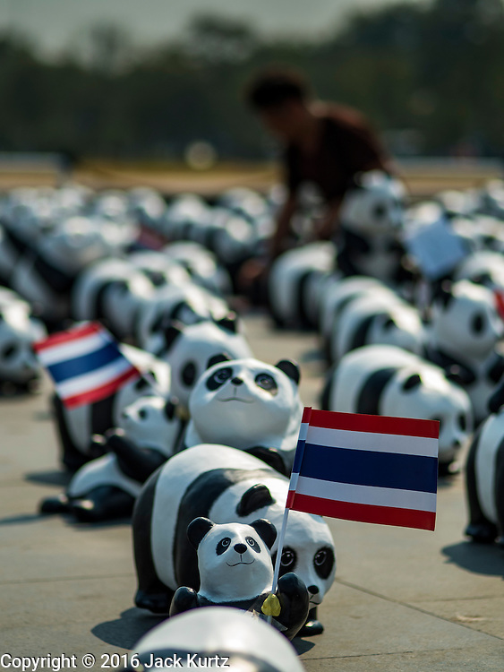 """04 MARCH 2016 - BANGKOK, THAILAND: Some of the 1600 paper maché pandas in the """"1600 Pandas+ World Tour in Thailand: For the World We Live In and the Ones We Love"""" exhibit on Sanam Luang in Bangkok hold a Thai flag. The 1600 paper maché pandas, an art installation by French artist Paulo Grangeon will travel across Bangkok and parts of central Thailand for the next week and then will be displayed at Central Embassy, a Bangkok shopping mall, until April 10. The display of pandas in Thailand is benefitting World Wide Fund for Nature - Thailand and is sponsored by Central Embassy with assistance from the Tourism Authority of Thailand and Bangkok Metropolitan Administration and curated by AllRightsReserved Ltd.     PHOTO BY JACK KURTZ"""