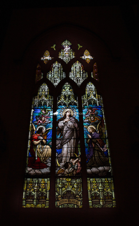"Lisa Johnston | lisajohnston@archstl.org  | Twitter: @aeternusphoto  Visitation St. Ann shrine is famous for its stained glass windows.   A ""Mass Mob"" was held on the solemnity of Corpus Christi at Visitation St. Ann Shrine in north St. Louis. The parish is a blending of three parishes, the former Holy Ghost and St. Ann and Our Lady of the Visitation. The parish holds a novena to St. Ann each year, honoring the grandmother of Jesus and their St. Vincent dePaul Society has a significant outreach to those who are experiencing corporal needs."