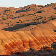 The Painted Hills in John Day National Monument, Oregon are comprised of several layers of ash and pumice deposits from the Cascades and area volcanoes. The deposits were laid down approximately 33 million years ago. Eventually the layers were thrust upward and tilted by movement of the Earth's plates. The red comes from rusty iron minerals; golden layers are rich with oxidized magnesium and iron, metamorphic claystone; the black comes from manganese.