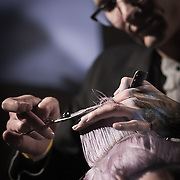 02/12/12 West Chester PA: RICHARD NICHOLAS studios Hairstylist Juaquin Camron working on a unknown model hair during Open Chair 11 Sunday, Feb. 12, 2012 at The Note in West Chester Pennsylvania.<br /> <br /> Special to Monsterphoto/SAQUAN STIMPSON