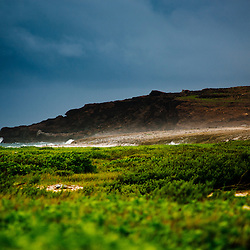 Vegetation, sand, and rocks, Baby Beach, Aruba