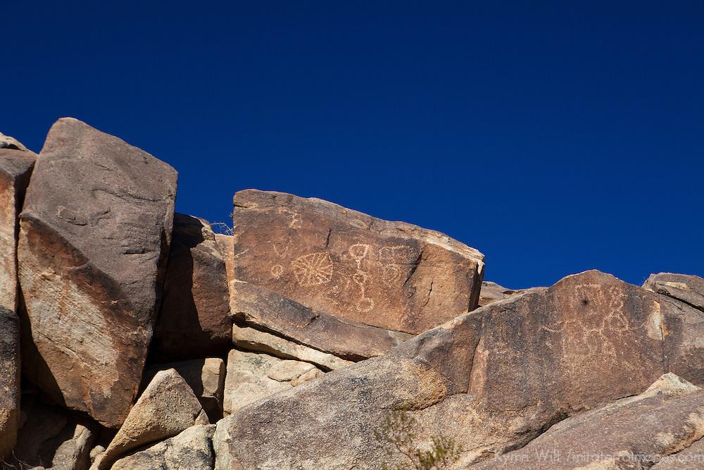 USA, California, Joshua Tree. Coyote Hole petroglyphs near Joshua Tree.