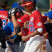 Dominican Republic pitch hitter Yassar Castillo (#1) celebrates with his team mates after homering to left center field during the top of the sixth inning, The Dominican Republic would go on to defeat Australia 7-2 at 2010 Aberdeen Baseball Tournaments in Aberdeen MD.