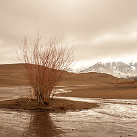 Medano Creek in Great Sand Dunes National Park and Preserve
