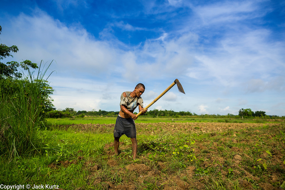 06 JUNE 2014 - IRRAWADDY DELTA,  AYEYARWADY REGION, MYANMAR: A farm worker uses a hoe to prepare a rice field for planting in the Irrawaddy Delta (or Ayeyarwady Delta) in Myanmar. The region is Myanmar's largest rice producer, so its infrastructure of road transportation has been greatly developed during the 1990s and 2000s. Two thirds of the total arable land is under rice cultivation with a yield of about 2,000-2,500 kg per hectare. FIshing and aquaculture are also important economically. Because of the number of rivers and canals that crisscross the Delta, steamship service is widely available.   PHOTO BY JACK KURTZ