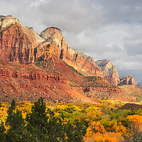 Watchman Campground Glows with Fall Colors, and Towering Navajo Sandstone Cliff Walls, Autumn, Zion National Park