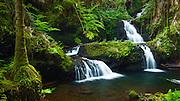Onomea Waterfalls, Hawaii Tropical Botanical Garden, Hamakua Coast, The Big Island, Hawaii USA