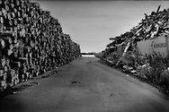 Timber and sheet metal piled up that had been collected after the tsunami struck Ishinomaki.  Miyagi Prefecture, Japan.