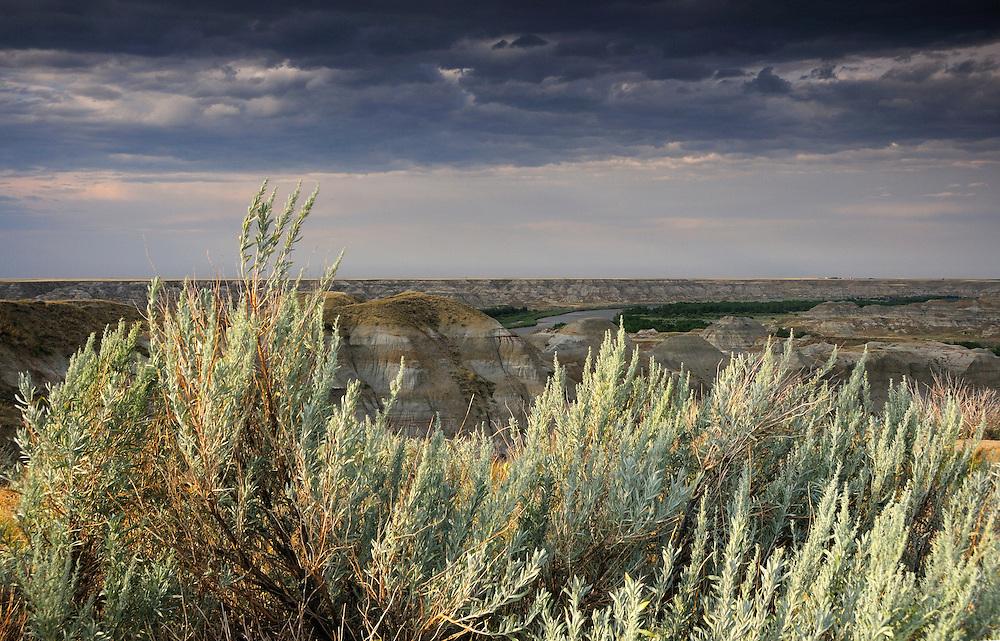 Badlands at Dinosaur Provincial Park, Alberta, Canada.