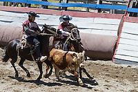 Rodeo at Futalefu, Chile