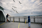 A man throws bread to seagulls on the ferry to Bainbridge Island, Seattle