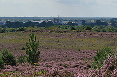 Heumense schans, Mookerheide, Natuurmonumenten, Mook, Limburg, Netherlands