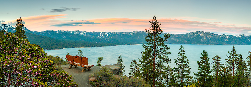 """""""Sunset at Lake Tahoe 38"""" - These Manzanita flowers and bench were photographed at sunset near the Stateline fire lookout in Crystal Bay, Lake Tahoe."""