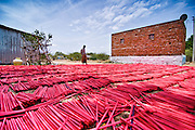 The papers used for fireworks  are dried in sunlight. Image © Balaji Maheshwar/Falcon Photo Agency