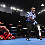 Cruiserweight boxing pro Tony Ferrante hit the canvas during champs at the chase against Cruiserweight boxing pro Alex Guerrero Friday, Nov 21, 2014 at The Case Center on The River Front in Wilmington, Del.